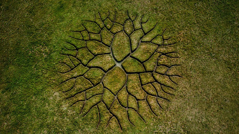 World Tree | © Krisztian Balogh / Behance