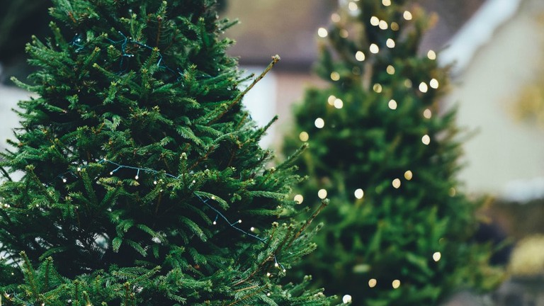 Christmas Traditions Around The World.The Weirdest European Christmas Traditions From Around The World