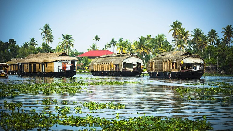The Best Things To See and Do in Alappuzha (Alleppey), India