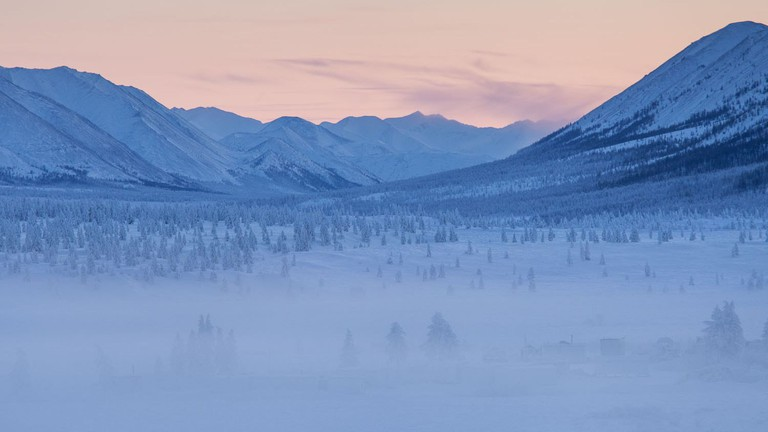Oymyakon forests | © Maarten Takens / WikiCommons