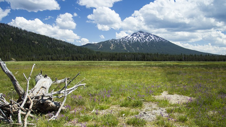5 Reasons to Visit Bend Over Portland