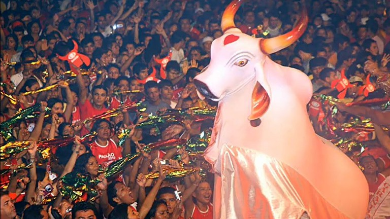 The Festival do Bumba Boi is based on the story of a resurrected ox