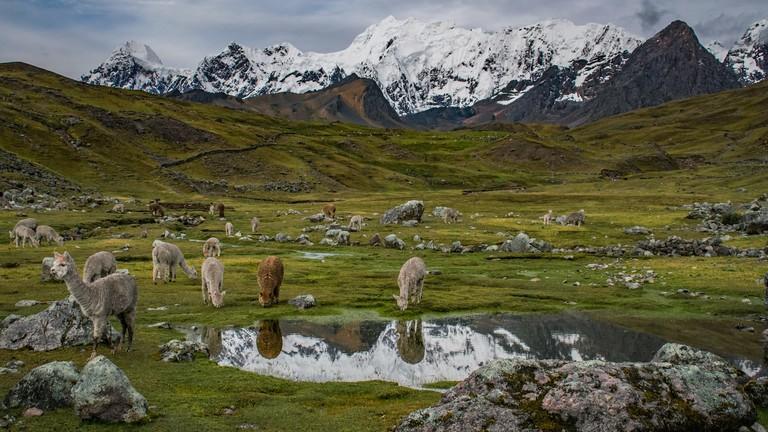 17 Photos That Will Make You Want to Trek Peru's Ausangate Mountains