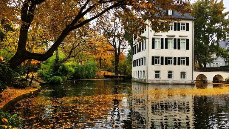 pond security frankfurt