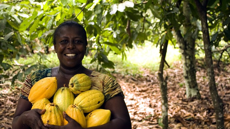 The Top 10 Agricultural Start-Ups in Nigeria
