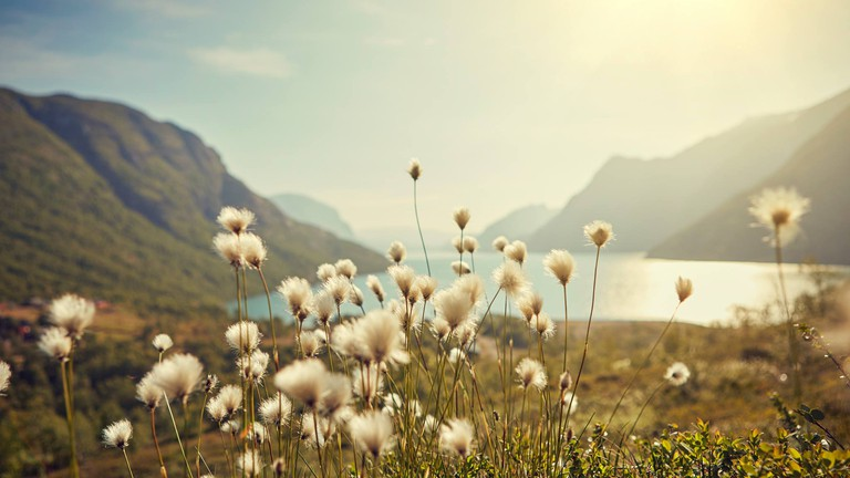 Untouched nature awaits at Norway's National Parks
