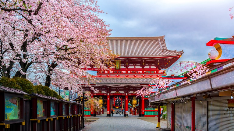 The 10 Best Hotels in Asakusa, Tokyo