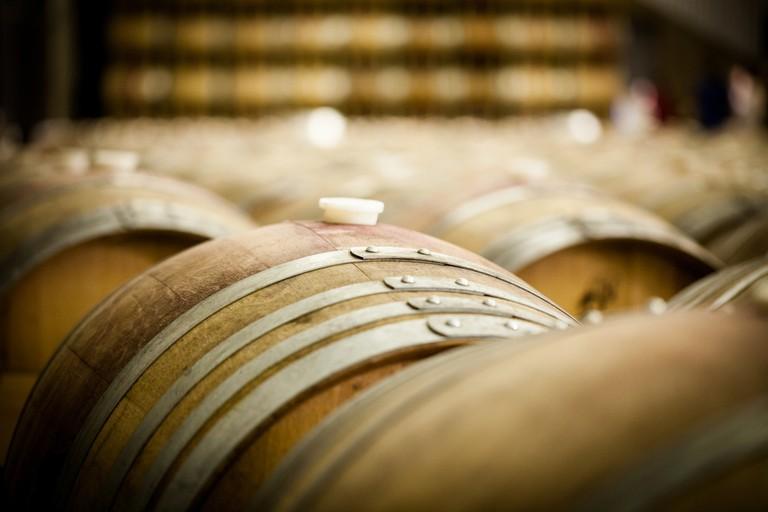Bouza Bodega Boutique - Wine Barrels at a Winery