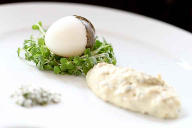 Gull's egg & celery salt, mayonnaise and mustard cress