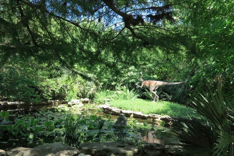 Prehistoric Garden, Zilker Botanical Gardens