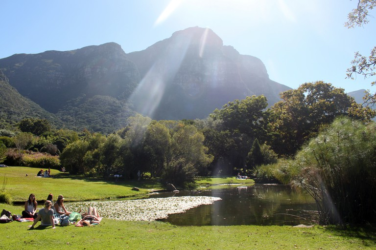Picnicking at Kirstenbosch Botanical Garden