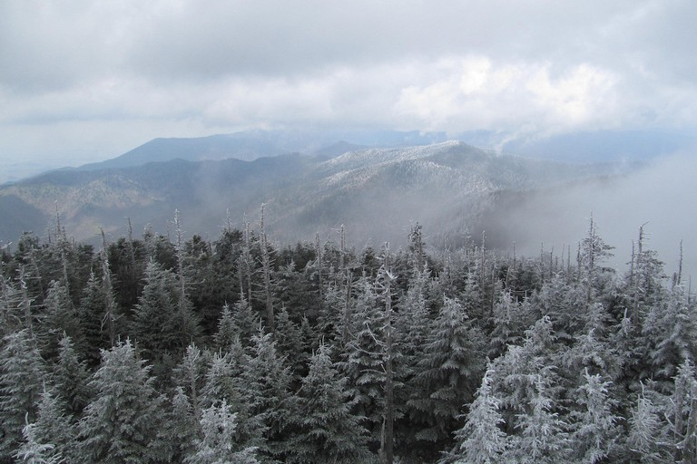 Clingmans Dome - Great Smoky Mountains National Park - North Carolina