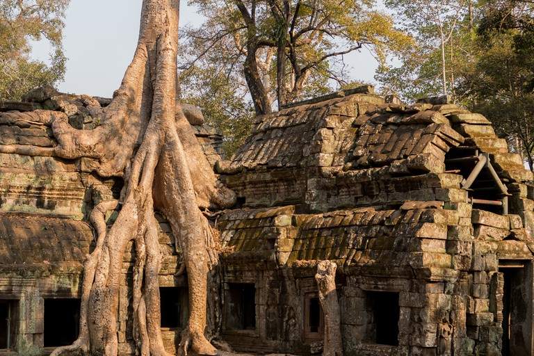 Ta Prohm provided the backdrop to Lara Croft: Tomb Raider starring Angelina Jolie.