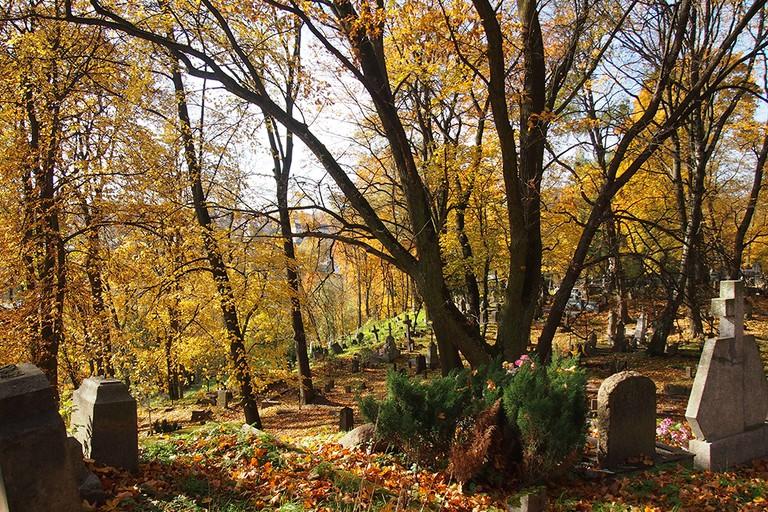 Bernardine Cemetery in the fall