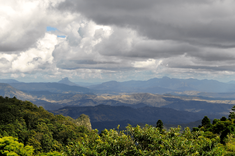 Lamington National Park Lookout