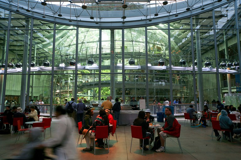 California Academy of Sciences Cafeteria