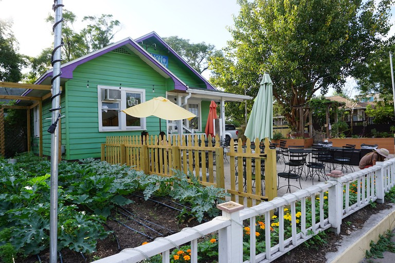 Dandelion Communitea Cafe Orlando