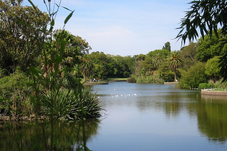 Royal Botanic Gardens View Melbourne