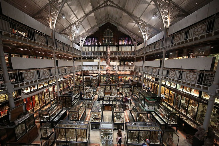 Interior of Pitt Rivers Museum