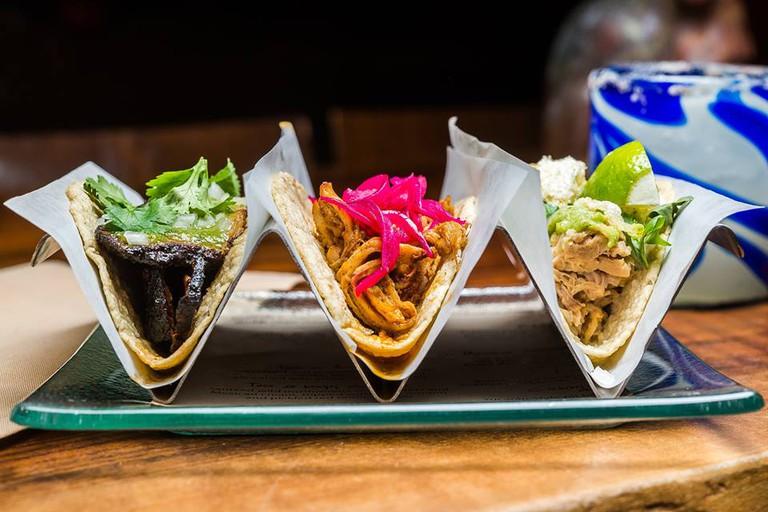 Oyamel Cocina Mexicana, Washington, DC