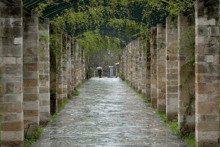 Rain in the National Garden