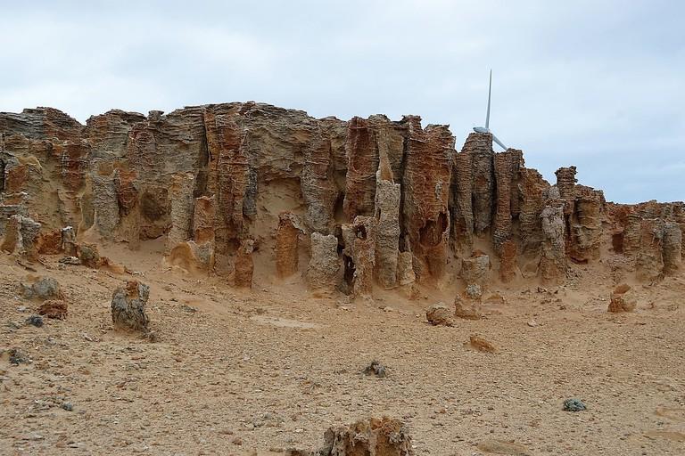 Cape Bridgewater Petrified Forest 001