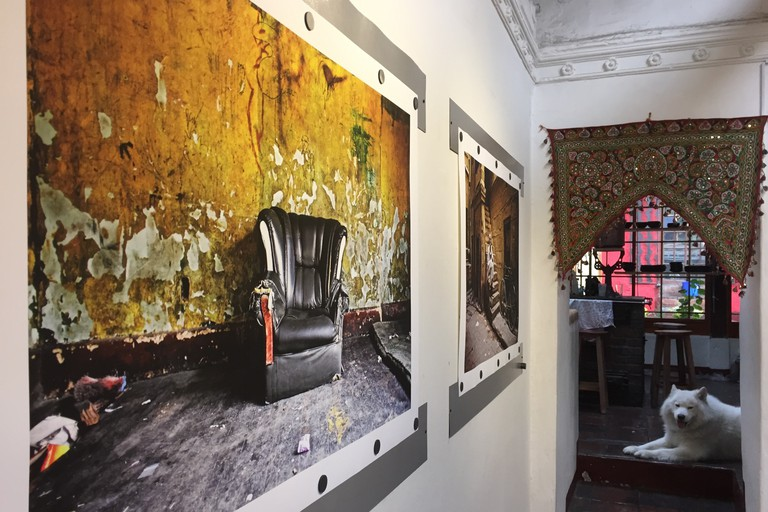 Photography exhibitions and the coolest hostel dog in Colombia at Fernweh