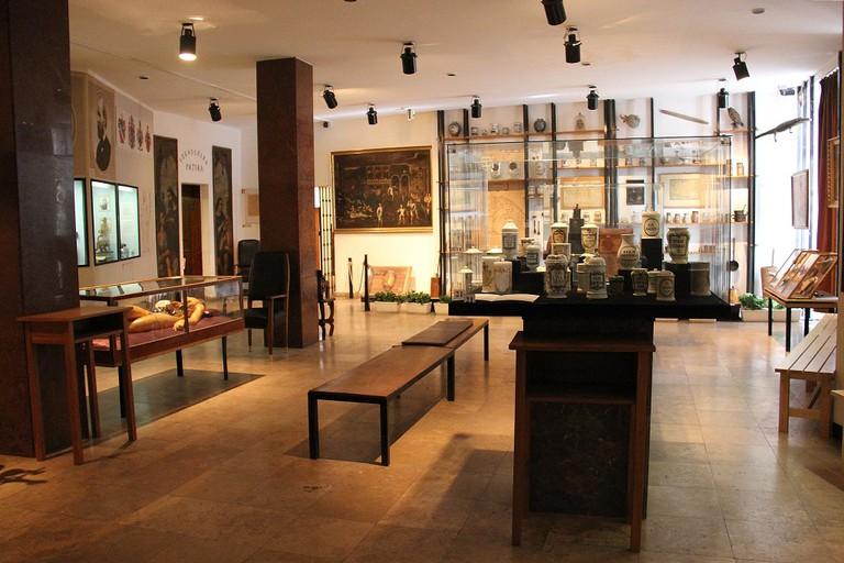 Laika ac Semmelweis Museum