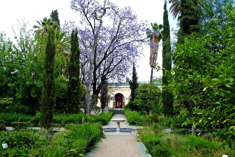 Gardens leading to Dar Batha Museum