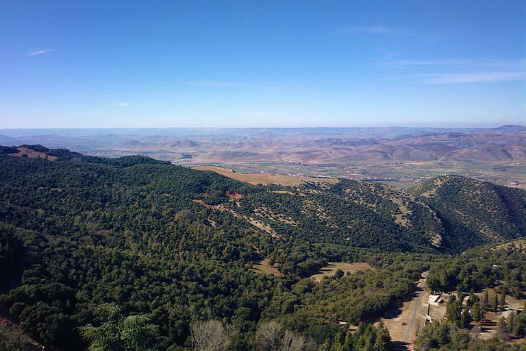 Verdant views across Ifrane National Park