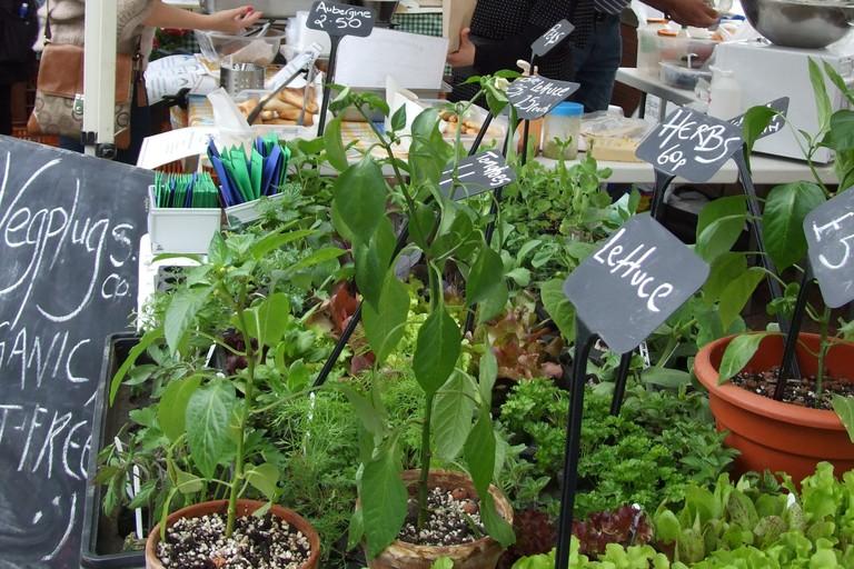 Riverside Farmers Market