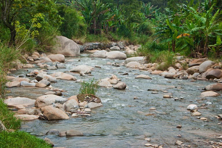 Natural River at Janda Baik