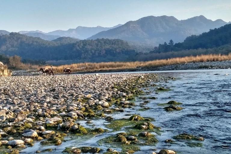 The Banks of Kosi River