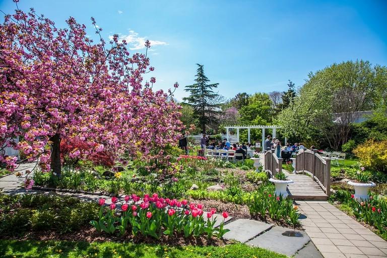 Queens Botanical Garden, New York, USA