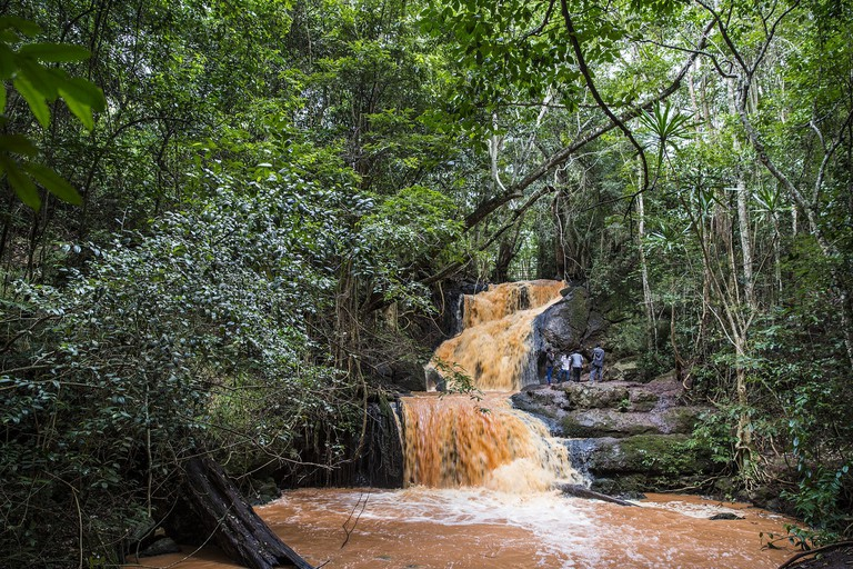 Waterfall at Karura Forest
