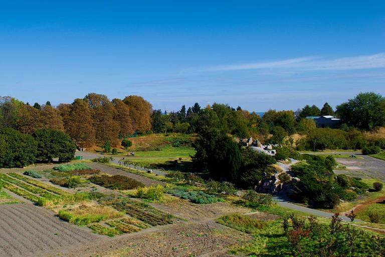 Botanical Garden in Kiev