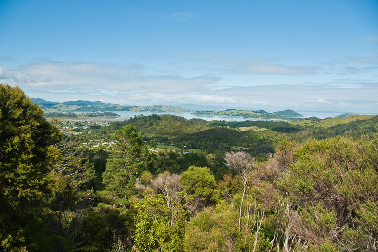 View of the Coromandel from the Driving Creek Railway