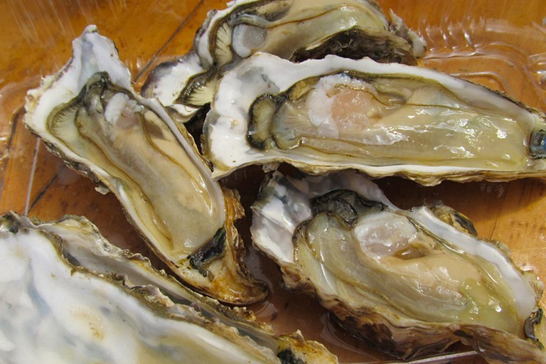 Oysters from the Coromandel Oyster Company