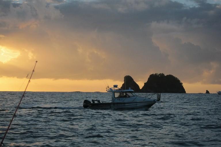 Fishing Charters in the Coromandel Pensinsula