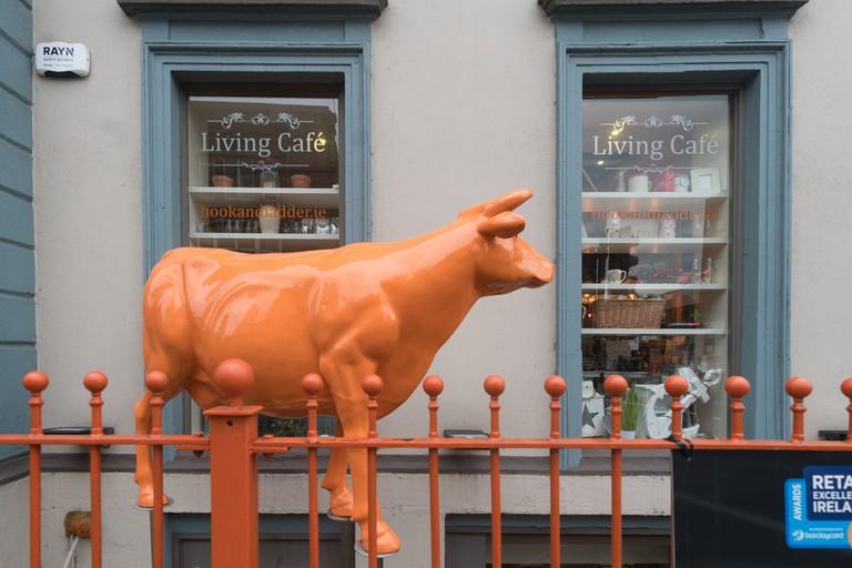 Hook and Ladder Cafe, Limerick