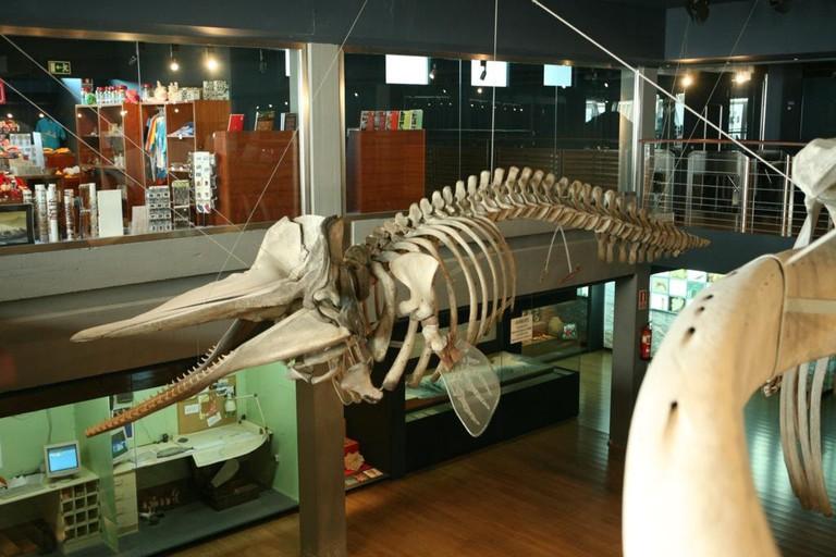 Museo Marítimo del Cantábrico, Santander
