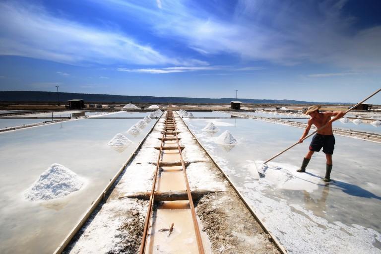 Salt Harvesting in Sečovlje Salina Nature Park