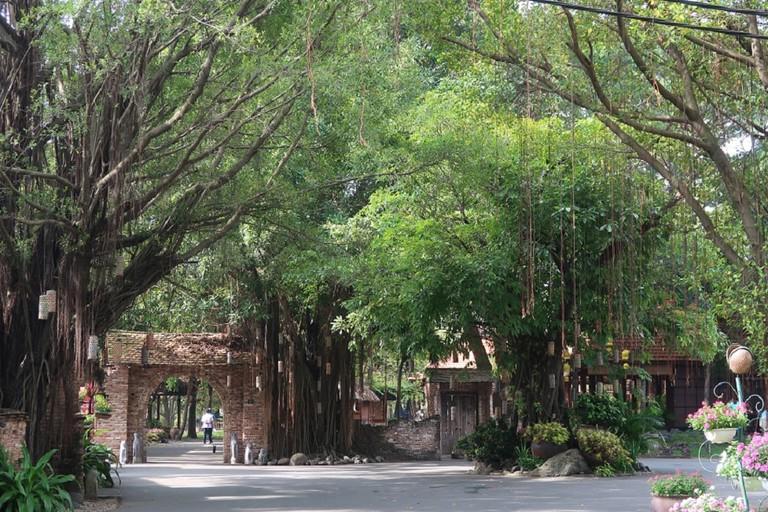 Shade and green at Van Thanh Park