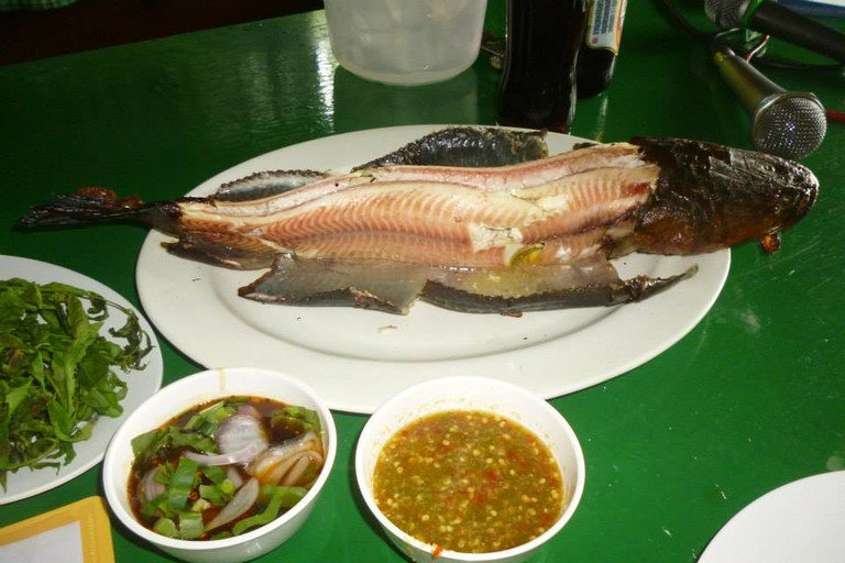 Fish in Singburi, Thailand