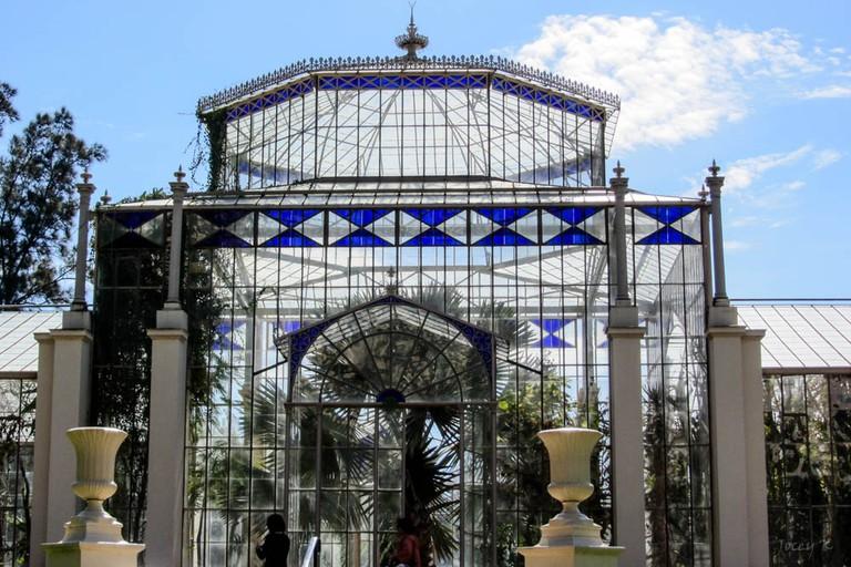 The Palm House at Adelaide Botanic Garden