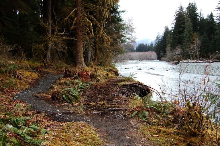 Hoh River, Olympic National Park, Washington