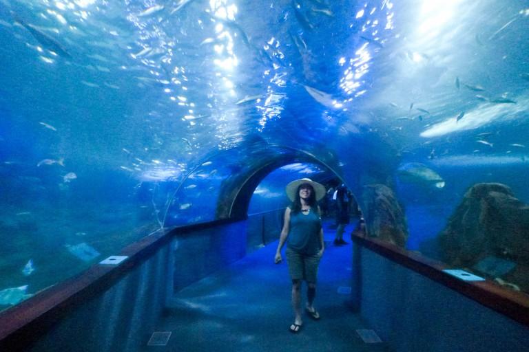 aquarium, San Sebastian, Donostia, Spain