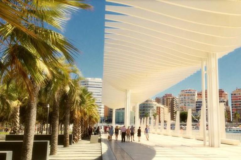 Málaga port's stunning 'Palm Garden of Surprises'