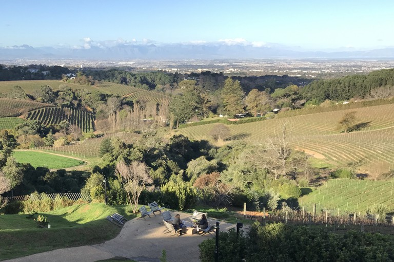 View from Chef's Warehouse Beau Constantia