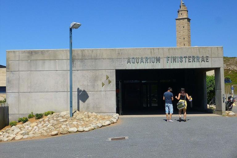 Aquarium Finisterrae, A Coruña